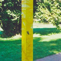 Gelbe CD-Säule